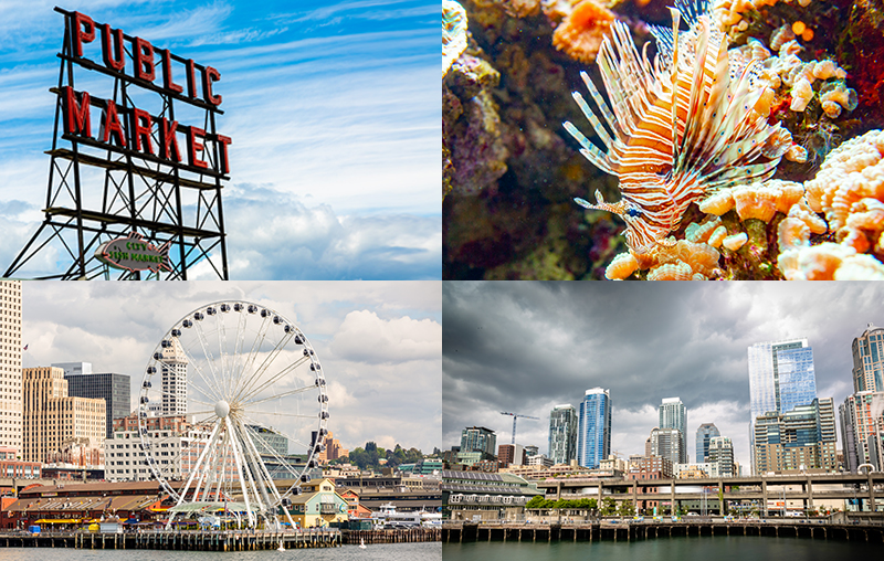 Seattle Part 2: Pike Place Public Market, Seattle Aquarium, & Argosy Harbor Cruise.